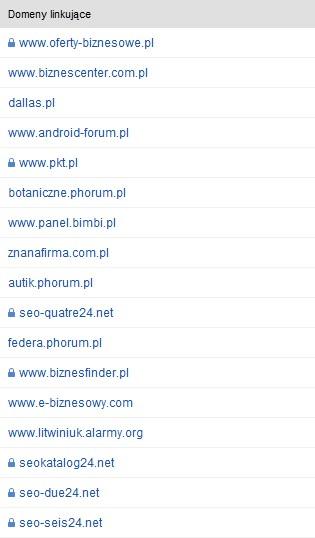 Przykład domeny o słabym profilu linków.